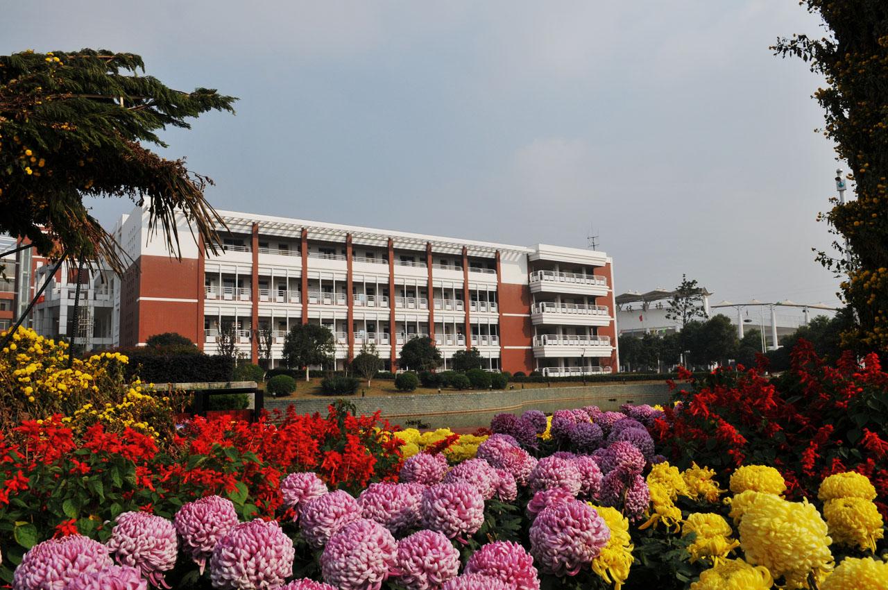2010年冬季學校風景7-華中師大一附中